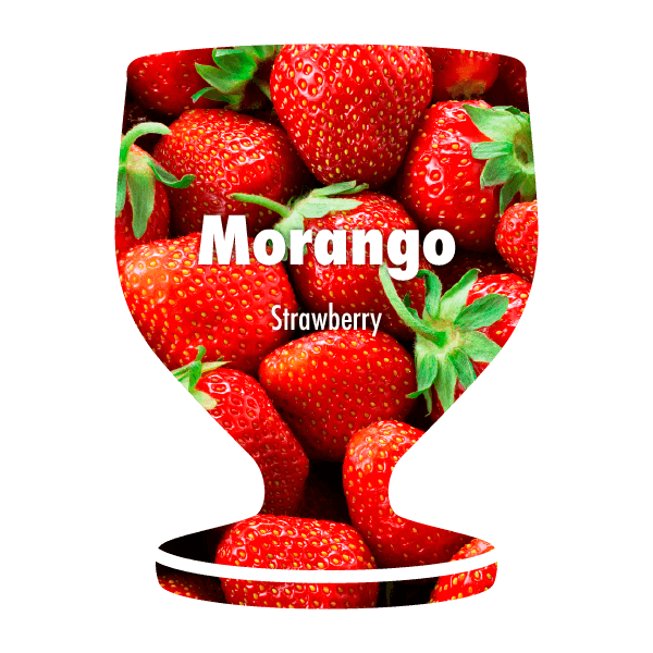 What the Poncha Filter - Strawberry