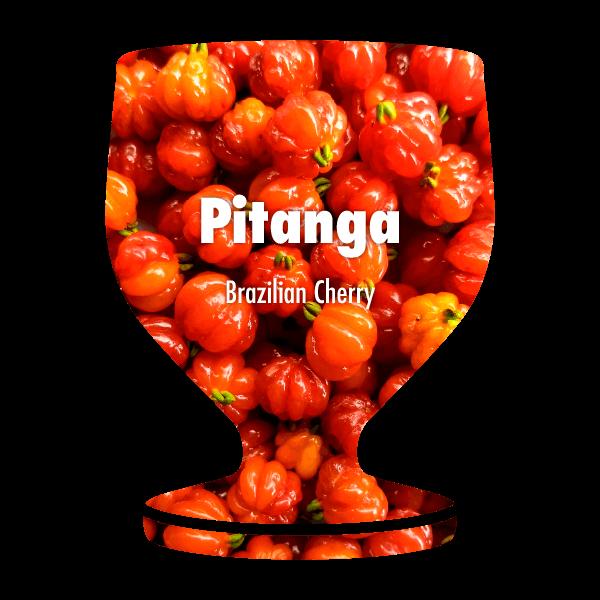 What the Poncha Filter - Brazilian Cherry